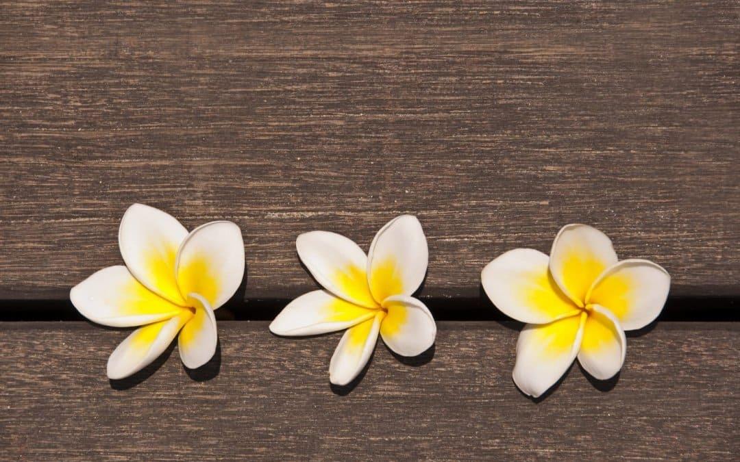 ¿Qué colchoneta debo usar para masaje tailandés?